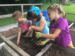 Children planting flowers in the dirt
