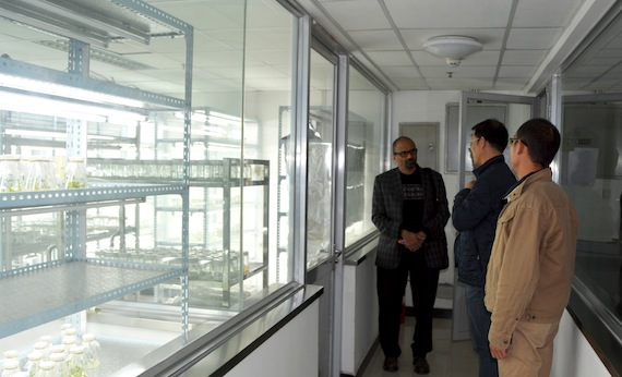West Virginia State University Teams with China for Agricultural Research