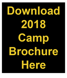 Download the camp brochure